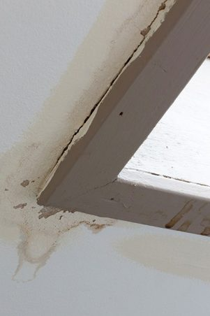 Leaking Skylight in need of roof replacement